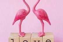 DIY - Flamingo / Bastel und Deko Ideen mit Flamingos, weil Flamingos einfach toll sind! Flamingo 4 President!