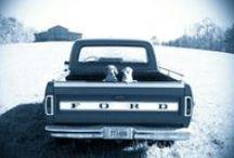 Ford / by Brandy Bolen