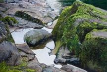 ARTIST - Tom Wheeler / Realist oil painting, Portraits, Landscapes, Seascapes, water and rocks.