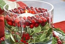 Healthe Holidays - Winter / Celebrate, it's healthy!