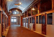 A Stable Life / Equestrian Facilities