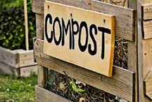 Soulsgarden. / Everthing about new manners of gardening