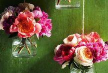 Healthe Holidays - Spring
