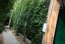 Green Walls / Jakob Stainless Steel Ropes Create Green Walls