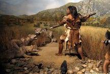 De prehistori / over het leven in de oertijd