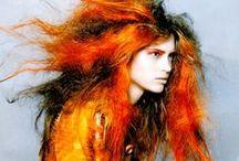 Orange / Orange inspiration.