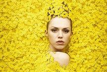 Yellow / Yellow inspiration.