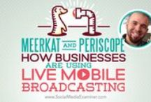 BargainsRus Periscope & Meerkat / Small Business and Periscope and Meerkat as a vehicle for profit
