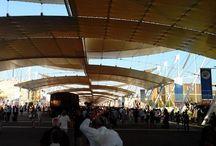 Expo Milano 2015 / Visita all'Expo di Milano il 30 Giugno