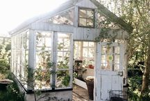 My greenhouse dream