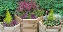 Great Gardens and Ideas / Whatever your plans for your garden, we're here to help and have everything you need to create your perfect outdoor space. Whether it's balcony gardening, pottering about or keeping the kids occupied, Wickes has it all.