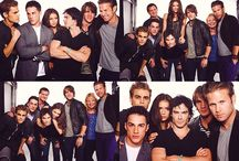 Vampire diaries / The vampire diaries is my number one favorite show tied with the X Files of course. I can pretty much watch them ALL day. / by Lisa Guenette