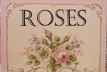 """""""roses"""" víš proč??"""