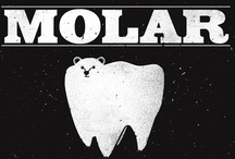 Dental lyfe / oral and maxilofacial