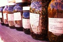 Magical Plants & Herbs / Magical, medicinal, delicious and/or just plain beautiful plants & herbs.