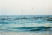 """seaside yoga / """"The cure for anything is salt water: Sweat, tears or the sea."""""""