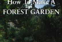 Garden: Permaculture