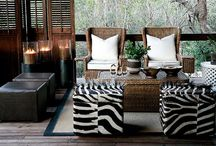 On safari / African Bush from interiors, game to clothing