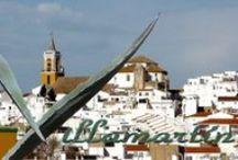 Villamartín y zona / Fotos tomadas en Villamartín y sus alrededores.