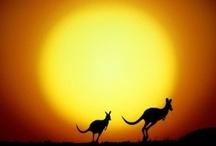 Australia...downunder / by Gerry Mangos