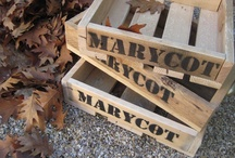 productos Marycot / by marycot !