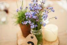 flowers for my wedding / by Katie Hilborn