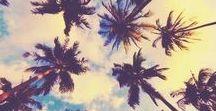 Voyage : California Road Trip / Voyage en Californie et itinéraire : Les meilleurs endroits à visiter lors d'un road trip en Californie. Villes, gastronomie et activités le long de la route de San Francisco à San Diego. // Best places to stop by during a Road Trip in California. Towns, food, and activities along the way from San Francisco to San Diego.