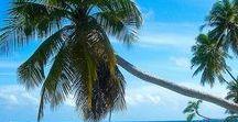 Voyage : Maldives / Voyage aux Maldives: Îles de rêves et eaux cristallines. Destinations pour les amoureux de plages, de mer et de ciels bleus. // Dream islands, crystalline water. A destination for beach lovers.