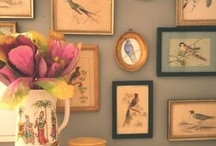decorate with bird prints / vintage prints abound of bird illustrations. / by Ode To June