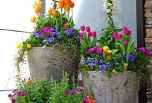 come to my garden / by Kathy Brogoitti