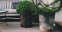 FLOWER POT Industrial Prints / Rustic, stressed, artisian flower & plant pots. | pots, flower pots, plant pots, loft, steampunk prints, industrial decor, industrial painting, rustic decor, vintage decor, wall art. 10% off at industrialprints.com today!