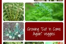 A-Z of Gardening / For beginning gardeners to look like pro's in every landscape