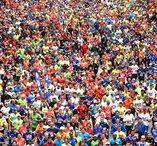 Especial Maratón / Maratonianos unos cuantos consejos para enfrentarse con éxito a los 42, llegar con una buena preparación y recuperar sin demasiados problemas