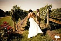 Theme: Vineyard Weddings / If you and your partner have a fondness for wine, vineyards, Napa Valley, or just think that a #vineyard #wedding theme would be fun, then here is some inspiration that will get you thinking.