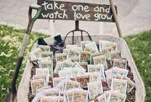 Cute Wedding Favors / Wedding favor ideas galore! Find unique and creative ideas for gifts for your guests here. #weddingfavors / by Wedding Favors Unlimited