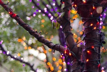 Halloween Light Displays and Decor Ideas / Use your LED lights to set up a scary scene for Halloween