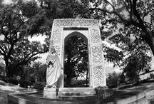 bonaventure cemetery / by Dan Hernandez