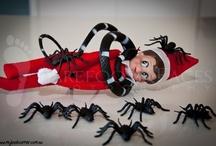 Mischievous Elf / by buncolady
