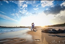 Reception & Wedding Planning / by Genesa Richards
