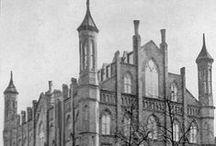 Schools of New York