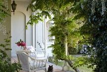 Arbors, Trellises, & Patios / by Lara