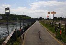 Ciclopista del Sole da Avio a Verona / Una bella Gita giornaliera. Si può partire in treno da Verona al mattino e rientrare in città nel pomeriggio. Buona parte del percorso è su pista ciclabile. Si può fare una variante fino a Bardolino