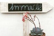 ATELIER DE NOVIAS  IMMACLÉ / De donde salen las creaciones #Immaclé.  NOVIAS MARAVILLOSAS. El taller atelier de Immaclé en Canet de Mar .BARCELONA