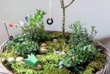 Viherpiiperrys / Grönsaker und stuff