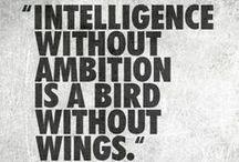 Motivation, quotes