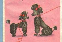 Poodle Ephemera / by Fur Elise