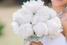 White Peonies / Fragrant, romantic white peonies are the perfect flower for any bridal bouquet!  Here are some popular varieties... #peony #white bridal #wedding #whitepeony