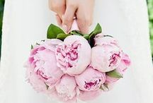 Peony Wedding Bouquets / Peonies are the number one flower requested for bridal bouquets. Who couldn't agree with bouquets like this!!!! #peony bouquets