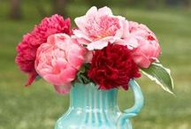 Peonies...just cause! / Peonies are more than for a bouquet.  They make any design special!