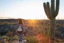 Arizona Desert Dwelling / Living in the desert you never feel closed in. In Estrella, you can lose yourself among the groves of saguaros and beautiful Sonoran Desert landscape and still make it back home in time for dinner. / by Estrella